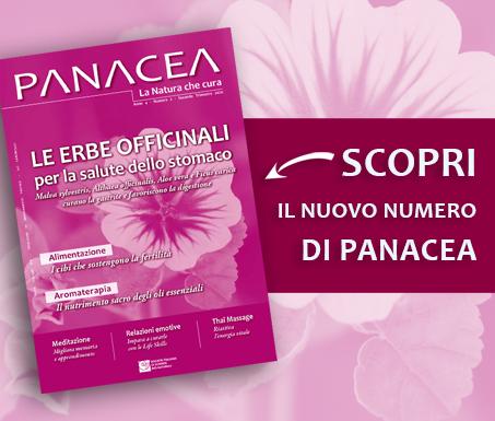 PanaceaBanner8