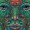 Ritiro di Sciamanesimo Transpersonale · 8-9-10 gennaio 2021 · Milano